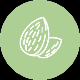 picto fruits secs, amandes