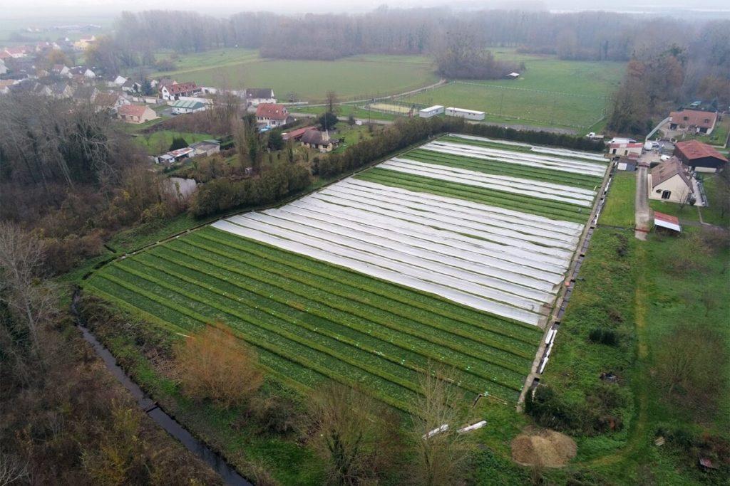 Cressonière à Houdancourt dans l'Oise