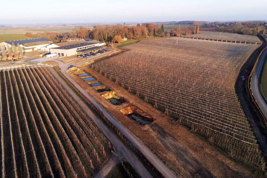 Vue aerienne vergers de Mathieu Ternynck, producteur de pommes et de poires à Ribemont