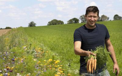 Le renouveau des carottes dans la Sommes